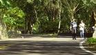 Zinnia Flower - Official Trailer (ENG)
