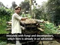 Ecovilas e a Permacultura: Um modelo de referência para o consumo sustentável? - Poster / Capa / Cartaz - Oficial 1