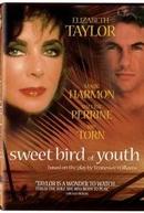 Doce Pássaro da Juventude (Sweet Bird of Youth)