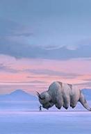 Avatar: The Last Airbender (1ª Temporada) (Avatar: The Last Airbender (Season 1))