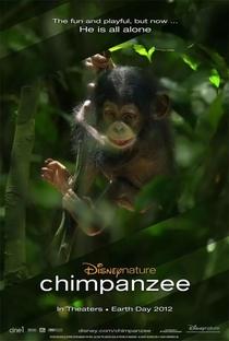 Chimpanzé - Poster / Capa / Cartaz - Oficial 2