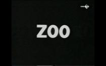 Zoo - Poster / Capa / Cartaz - Oficial 1