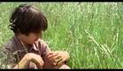 A chave dos campos/La Clé des Champs - Trailer