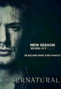 Sobrenatural (10ª Temporada) - Poster / Capa / Cartaz - Oficial 5