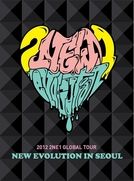 2012 2NE1 GLOBAL TOUR [NEW EVOLUTION IN SEOUL] (2012 2NE1 GLOBAL TOUR [NEW EVOLUTION IN SEOUL])