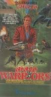 Guerreiros Ninja (Ninja Warriors)