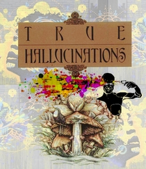 Terence McKenna's True Hallucinations - Poster / Capa / Cartaz - Oficial 1