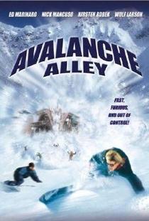 A Fúria da Avalanche - Poster / Capa / Cartaz - Oficial 1