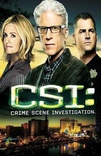 CSI: Investigação Criminal (14ª Temporada) - Poster / Capa / Cartaz - Oficial 2