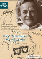 O Fantástico Sr. Feynman (The Fantastic Mr. Feynman)