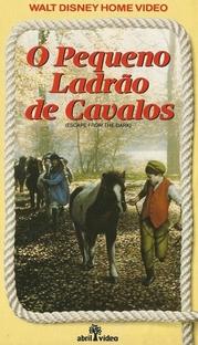 O Pequeno Ladrão de Cavalos - Poster / Capa / Cartaz - Oficial 5