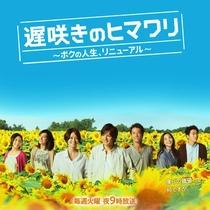Osozaki no Himawari - Poster / Capa / Cartaz - Oficial 1
