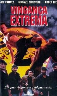 Vingança Extrema - Poster / Capa / Cartaz - Oficial 2