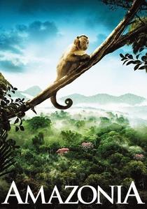 Amazônia - Poster / Capa / Cartaz - Oficial 3