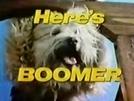Boomer (1ª Temporada)