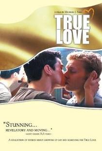 True Love - Poster / Capa / Cartaz - Oficial 1