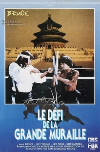 Ninja - O Último Dragão - Poster / Capa / Cartaz - Oficial 3