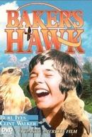 O Falcão Amigo (Baker's Hawk)