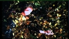 White Angel Trailer (1994)
