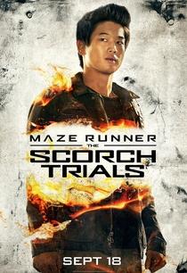 Maze Runner: Prova de Fogo - Poster / Capa / Cartaz - Oficial 13