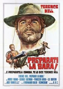 Viva Django! - Poster / Capa / Cartaz - Oficial 6