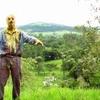 Conheça Zombio 2, continuação do clássico cult brasileiro Zombio | Boca do Inferno