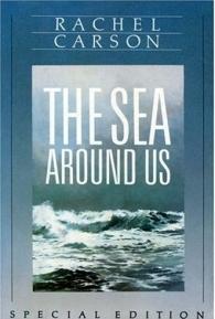 O Mar que nos Cerca - Poster / Capa / Cartaz - Oficial 1