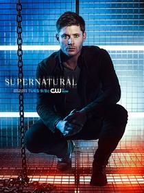 Sobrenatural (9ª Temporada) - Poster / Capa / Cartaz - Oficial 3