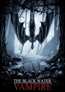 O Assassino das Sombras - Poster / Capa / Cartaz - Oficial 2
