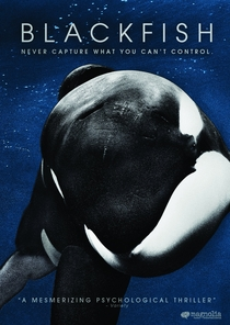 Blackfish - Fúria Animal - Poster / Capa / Cartaz - Oficial 3