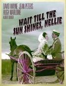 Cavalgada de Paixões (Wait Till the Sun Shines, Nellie)