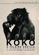 Koko: A Talking Gorilla (Koko: A Talking Gorilla)