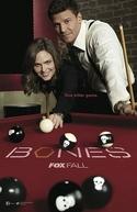 Bones (10ª Temporada) (Bones (Season 10))