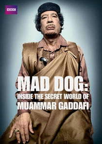 O Mundo Secreto de Muammar Gaddafi - Poster / Capa / Cartaz - Oficial 2
