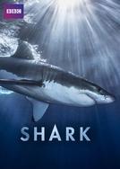 Shark (1ª Temporada) (Shark (1ª Temporada))