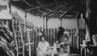 1902 Les Aventures de Robinson Crusoé
