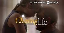 Chasing Life (2ª Temporada) - Poster / Capa / Cartaz - Oficial 2