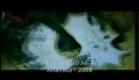 Anamika Trailer 2008 - BOLLYDVD.NET