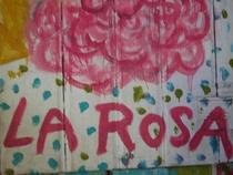A Rosa - Poster / Capa / Cartaz - Oficial 1