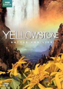 Yellowstone - Poster / Capa / Cartaz - Oficial 1