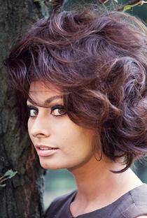 Sophia Loren - Poster / Capa / Cartaz - Oficial 3