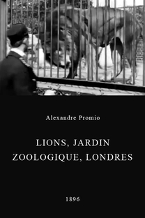 Lion, London Zoological Gardens - Poster / Capa / Cartaz - Oficial 1