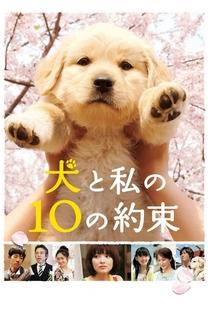 10 Promessas ao meu cão - Poster / Capa / Cartaz - Oficial 1