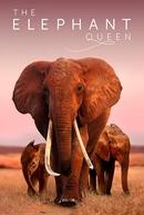 The Elephant Queen (The Elephant Queen)