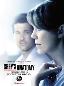 A Anatomia de Grey (11ª Temporada) - Poster / Capa / Cartaz - Oficial 1
