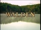 Walden ou A Vida nos Bosques (Walden or Life in the Woods)