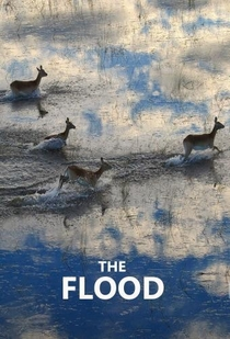 The Flood - Poster / Capa / Cartaz - Oficial 3