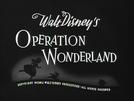 Operation Wonderland (Operation Wonderland)
