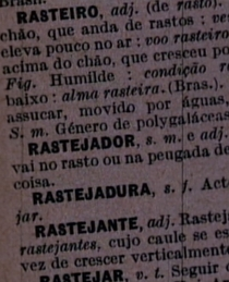Rastejador, s. m.  - Poster / Capa / Cartaz - Oficial 2