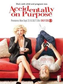 Accidentally on Purpose (1ª Temporada) - Poster / Capa / Cartaz - Oficial 1